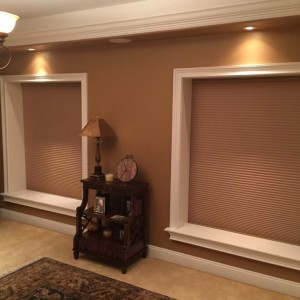 honeycomb shades pros and cons